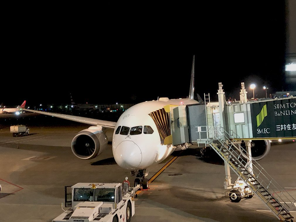 JL771-Docked-B787-Dreamliner.original.jpg