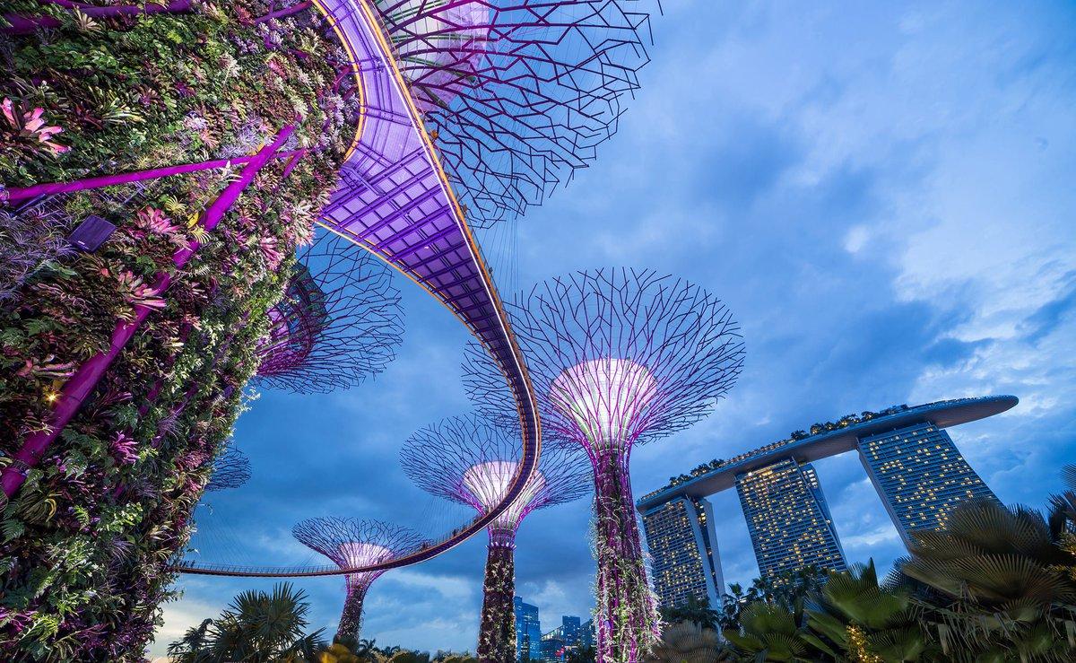 Singapore-Gardens-by-the-Bay-2200px.original.jpg